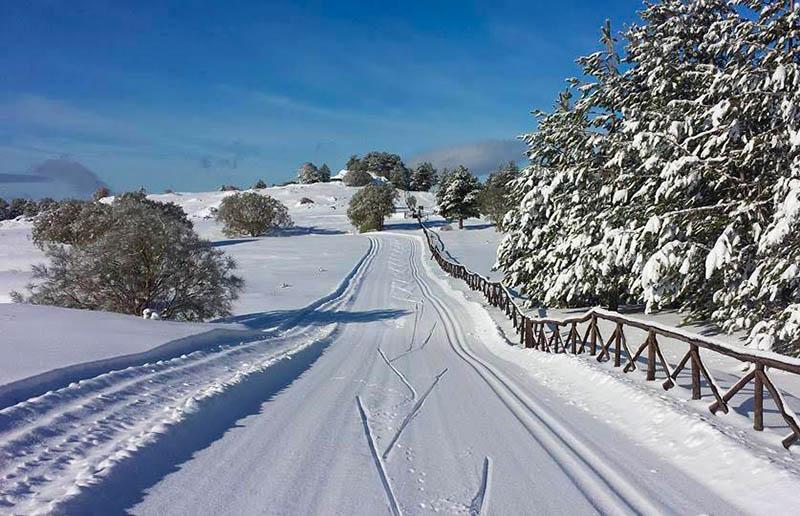 Etna aperte a piano vetore le piste per lo sci di fondo for Motta arredi ragalna