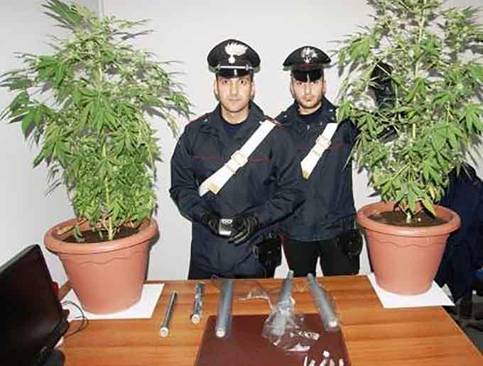 Droga, arresti e segnalazioni dei Carabinieri a Paternò e Randazzo