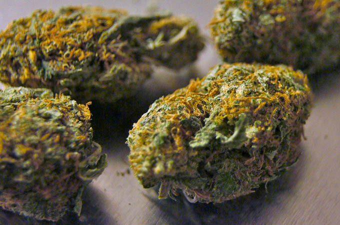 Adrano, segnalati tre giovani malettesi per detenzione di droga