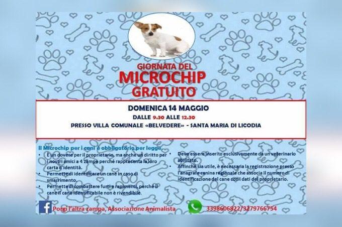"""Santa Maria di Licodia, domenica la """"Giornata del microchip gratuito"""""""