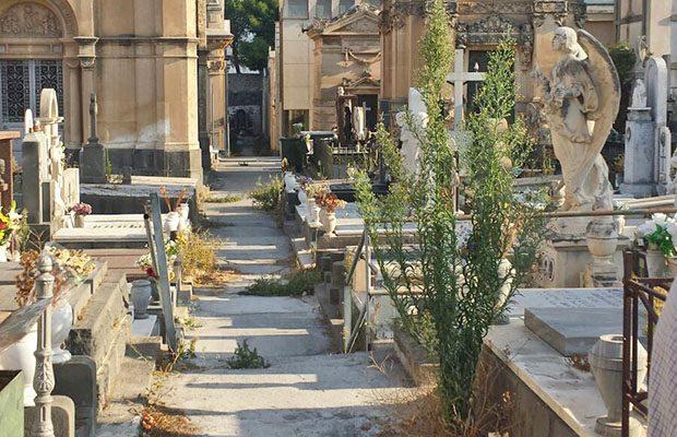 Paternò, sterpaglie nei due cimiteri sotto gli occhi dei visitatori
