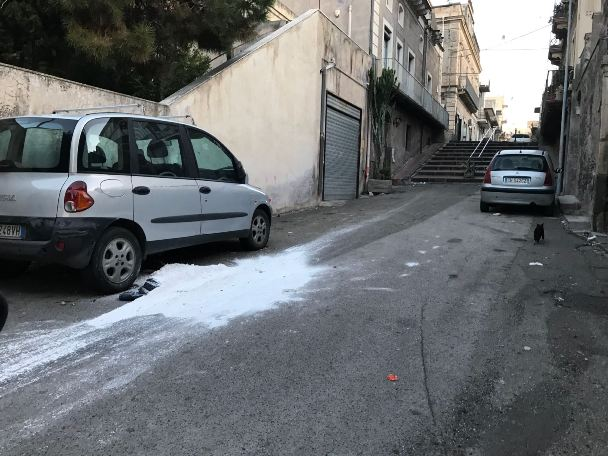 Santa Maria di Licodia. Gatto morto in via La Marmora, cittadini attuano soluzione fai da te