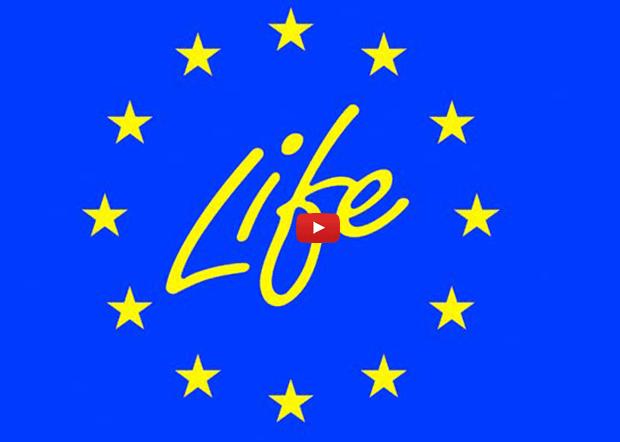 """Paternò. Finanziato progetto """"Life"""" dei comuni simetini"""