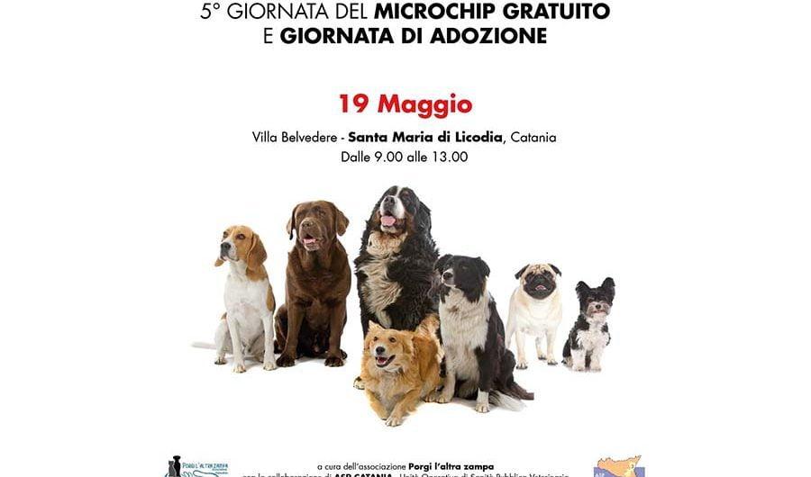 """Santa Maria di Licodia. Domenica la """"V Giornata del microchip gratuito"""""""