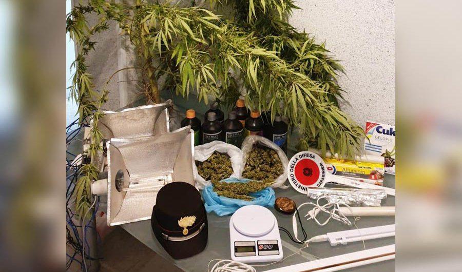 Belpasso. La droga nel ripostiglio: arresto e denuncia per una coppia