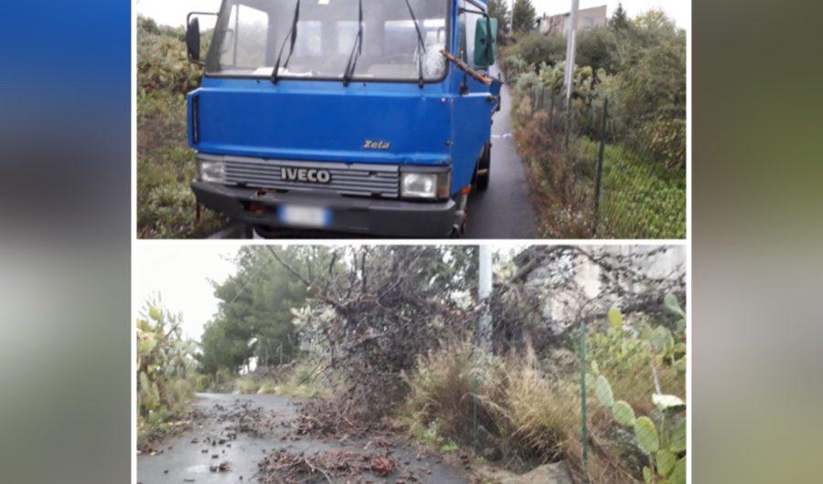 Biancavilla. Albero finisce contro camion in zona Badalato