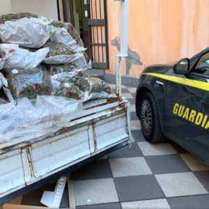 """Catania, 41 chili di """"erba"""" in auto: arrestato esponente dei """"malpassoti"""""""