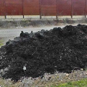"""Rifiuti. La Regione Siciliana fa """"strage"""" di progetti di compostaggio"""