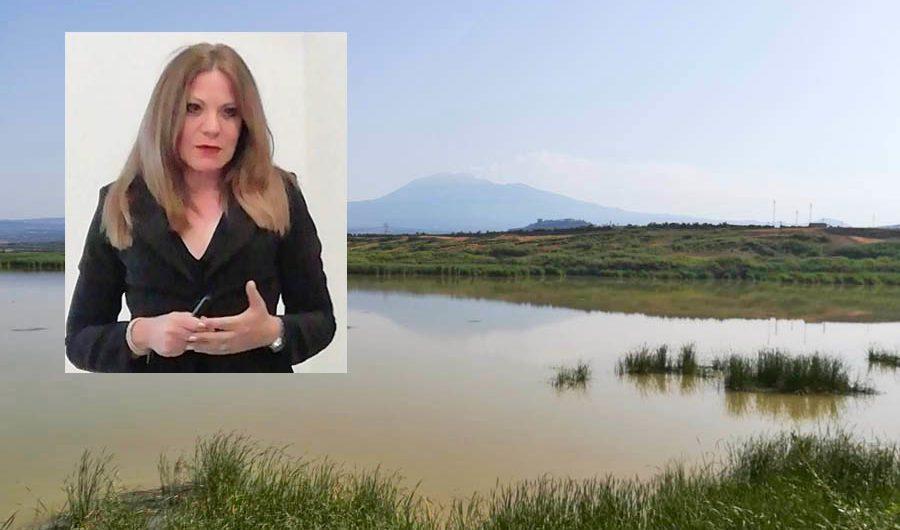 Elisa Coppola (Vivisimeto): «Ponte Barca, volontariato non può sostituirsi a istituzioni»